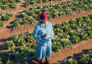 edge computing agriculture Africa Microsoft