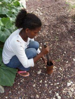 ethiopia grinding coffee