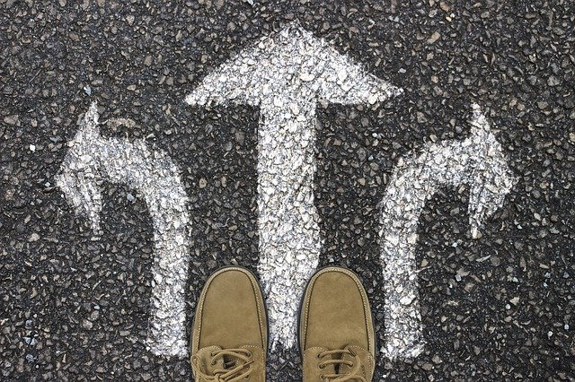 Choosing the Right Startup Investment