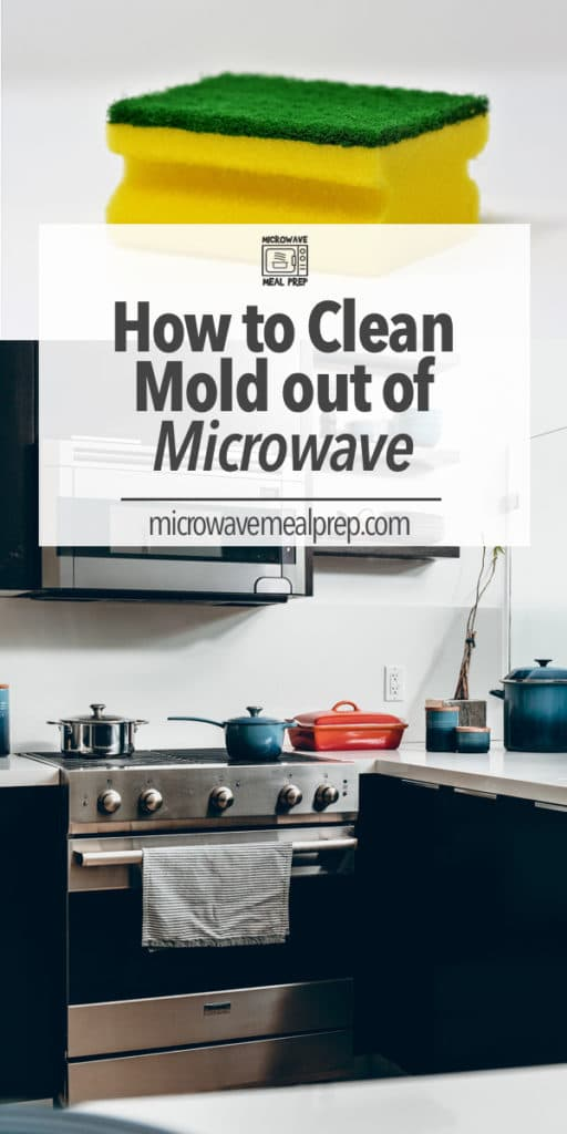 how to clean mold out of microwave