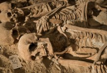 150 skeletons found in Excavated