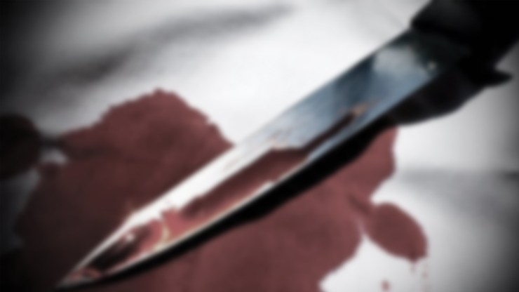 Telugu News 62 Year Old Punjab Man Kills Son, Cuts Body Into Pieces 'To Marry' Daughter In law