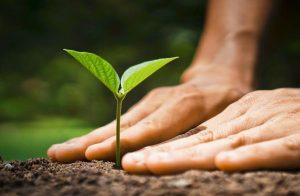honeywell-green-initiatives