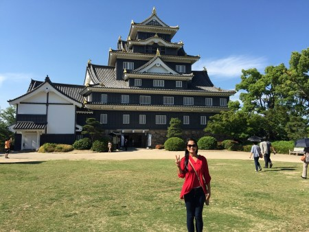 Castles Everywhere! Osaka Castle this time