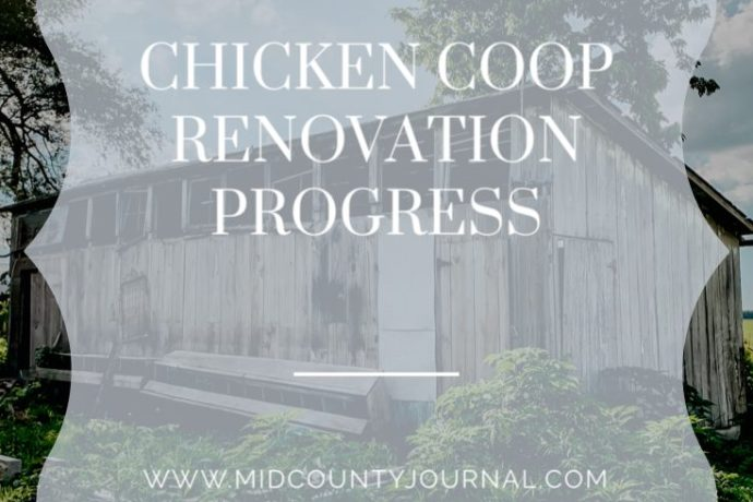 Chicken Coop Renovation Progress!