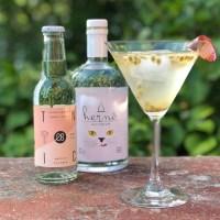 Våra fem bästa tips för Gin&Tonic