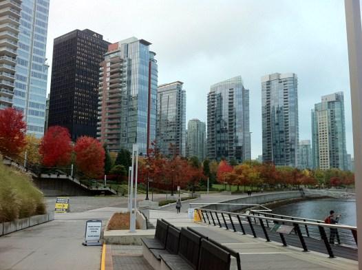 Downtown foilage