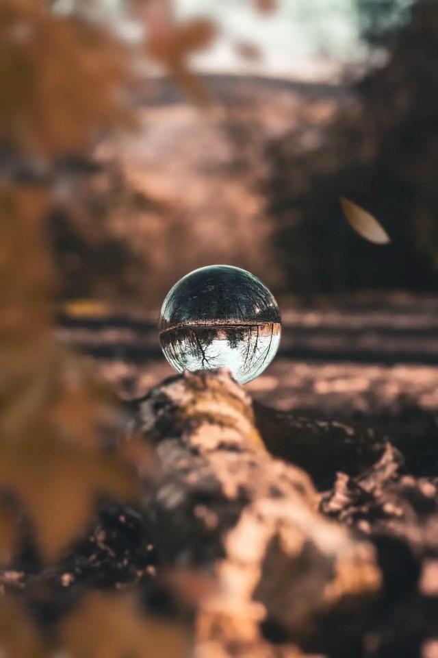 glass ball on wood