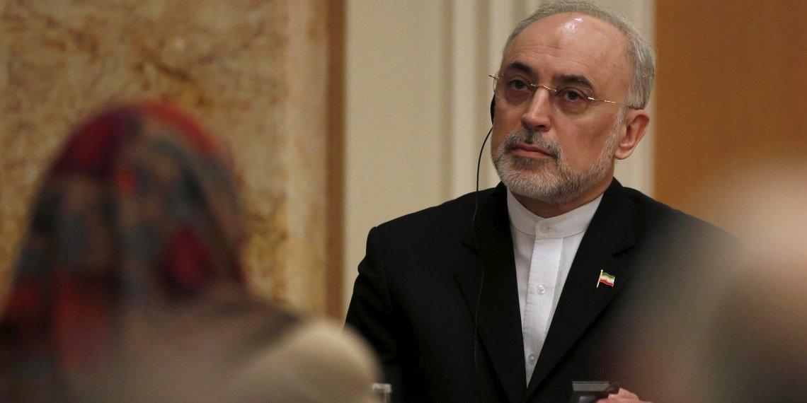 FILE PHOTO: Iran's head of the country's Atomic Energy Organization, Ali Akbar Salehi attends a seminar at the Japan Institute of International Affairs in Tokyo, Japan, November 5, 2015. . REUTERS/Yuya Shino/File Photo