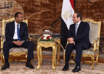 Egyptian President Abdel Fattah al-Sisi (R) meets with Ethiopian Prime Minister Abiy Ahmed at the Ittihadiya presidential palace in Cairo, Egypt, June 10, 2018. (Reuters)