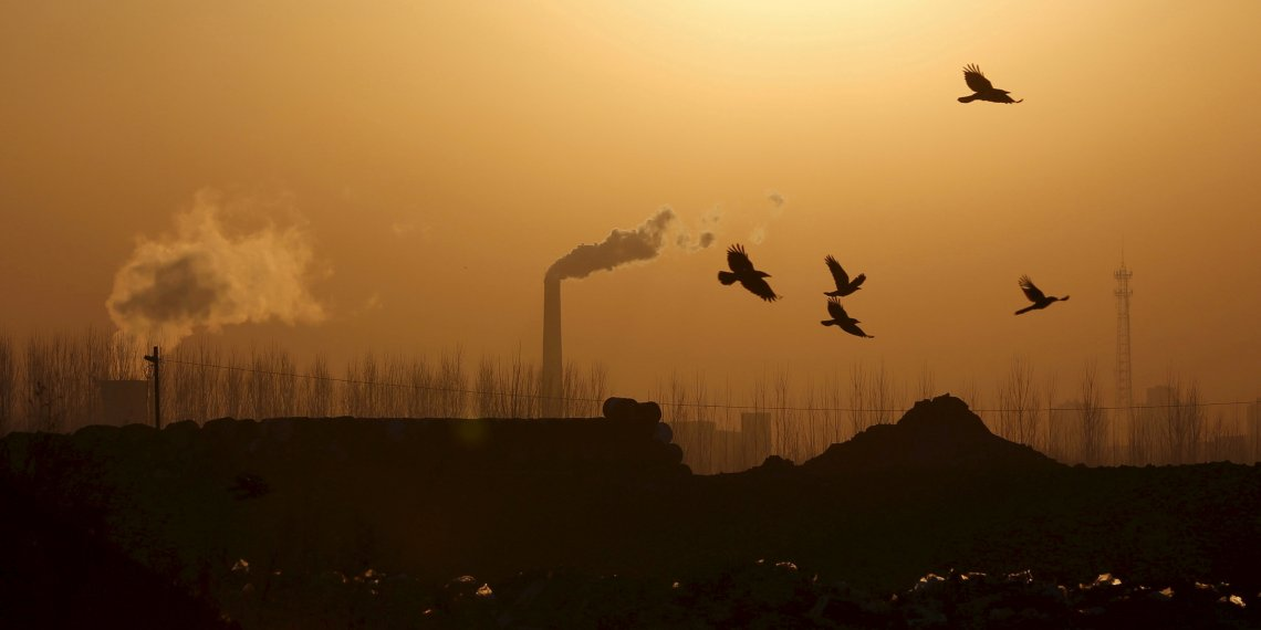FILE PHOTO: Birds fly over a closed steel factory where chimneys of another working factory are seen in background, in Tangshan, China February 27, 2016.  REUTERS/Kim Kyung-Hoon/File Photo