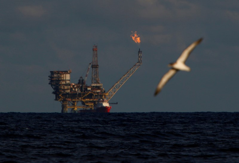 FILE PHOTO: A seagull flies in front of an oil platform in the Bouri Oilfield some 70 nautical miles north of the coast of Libya, October 5, 2017. REUTERS/Darrin Zammit Lupi