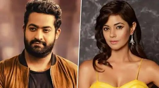 Actress Meera Chopra Receives Rape, Death Threats From Junior NTR Fans