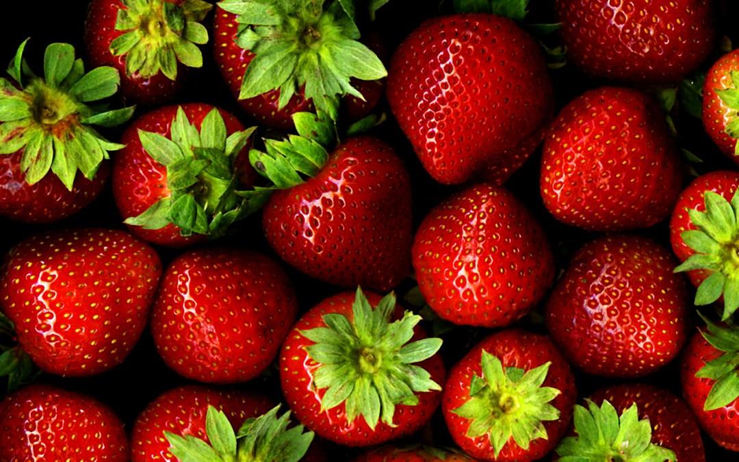 Georgia Strawberry Festival 2017