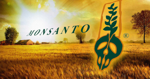 Differentiation Through Value Added Services – Monsanto