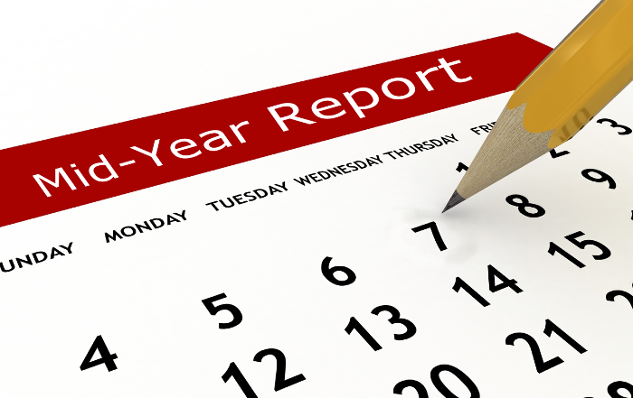 Image result for midyear report