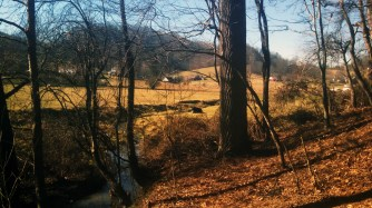 Jan 2015 - Creek bottomland