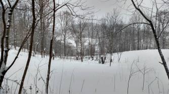 2016 Jan - Snow07