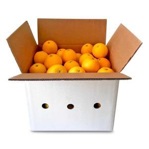Cropeat-naranjas-para-zumo-2