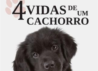 4 vidas de um cachorro