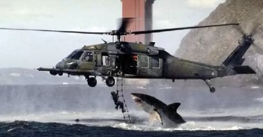 Fotos, Curiosidades, Comunicação, Jornalismo, Marketing, Propaganda, Mídia Interessante shark-helicopter-fake-picture Curiosidades Curiosidades