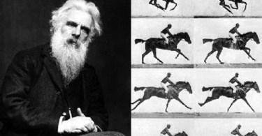 Eadweard Muybridge horse post - Dica Experiências, pegadinhas e mágicas