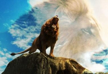 """leao real - Disney e o futuro remake  de """"O Rei Leão"""" na vida real"""