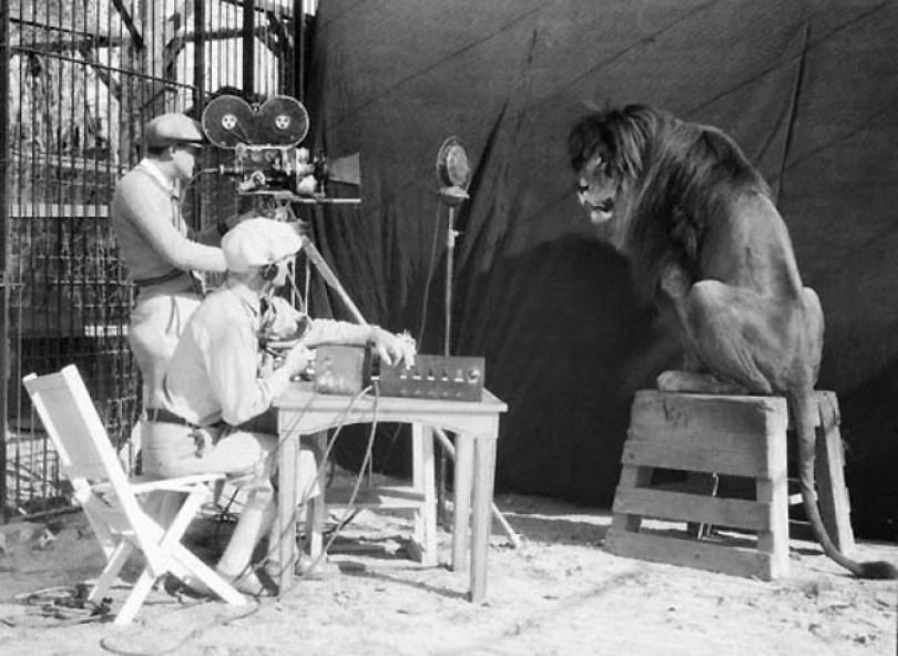 leaomgm - Como foi tirada a foto do leão da MGM?