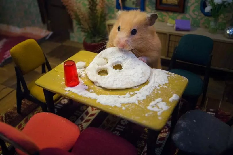 """Crafted miniature town for HUNGRY HUNGRY HAMSTERS online series 5935d48660172  880 - Genial! Artistas criam uma """"mini cidade"""" para Hamsters"""