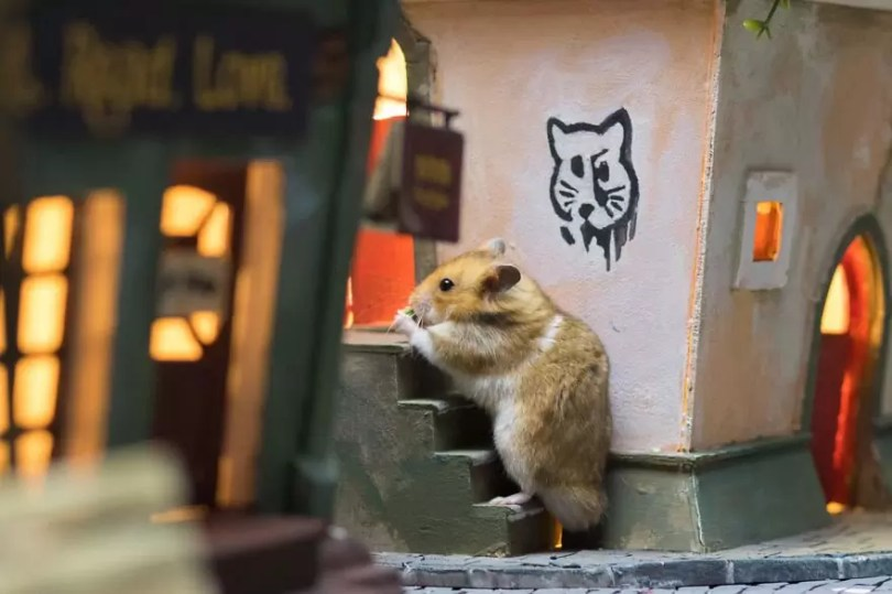 """Crafted miniature town for HUNGRY HUNGRY HAMSTERS online series 5935d4fee0a68  880 - Genial! Artistas criam uma """"mini cidade"""" para Hamsters"""