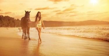 cavalos selvagens fotos profissionais 15 - Startup brasileira potencializa métricas de campanhas digitais