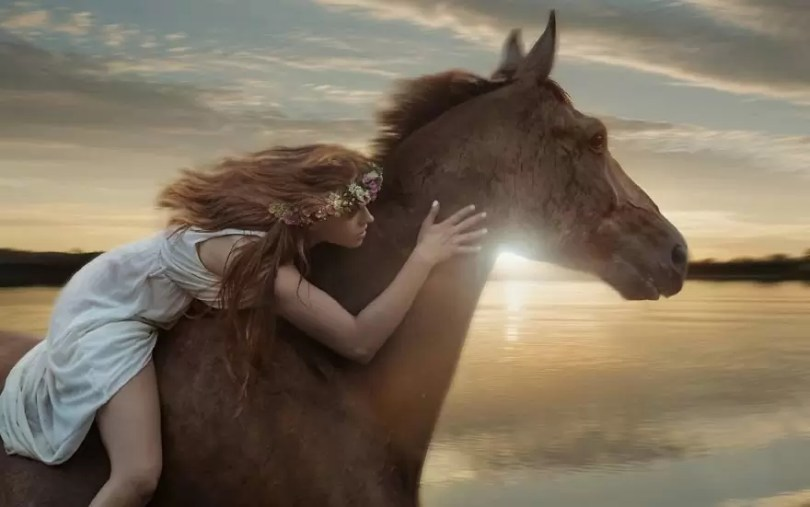 Fotos, Curiosidades, Comunicação, Jornalismo, Marketing, Propaganda, Mídia Interessante cavalos-selvagens-fotos-profissionais-5 Fotos lindas capturadas de cavalos selvagens Fotos e fatos Marketing  cavalos selvagens