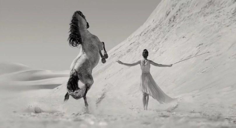 Fotos, Curiosidades, Comunicação, Jornalismo, Marketing, Propaganda, Mídia Interessante cavalos-selvagens-fotos-profissionais-9 Fotos lindas capturadas de cavalos selvagens Fotos e fatos Marketing  cavalos selvagens