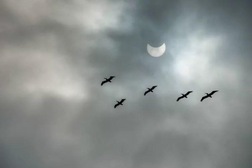 melhor linda foto eclipse total do sol estados unidos 21 agosto 2017 18 - As 30 melhores fotos do eclipse solar Total nos Estados Unidos