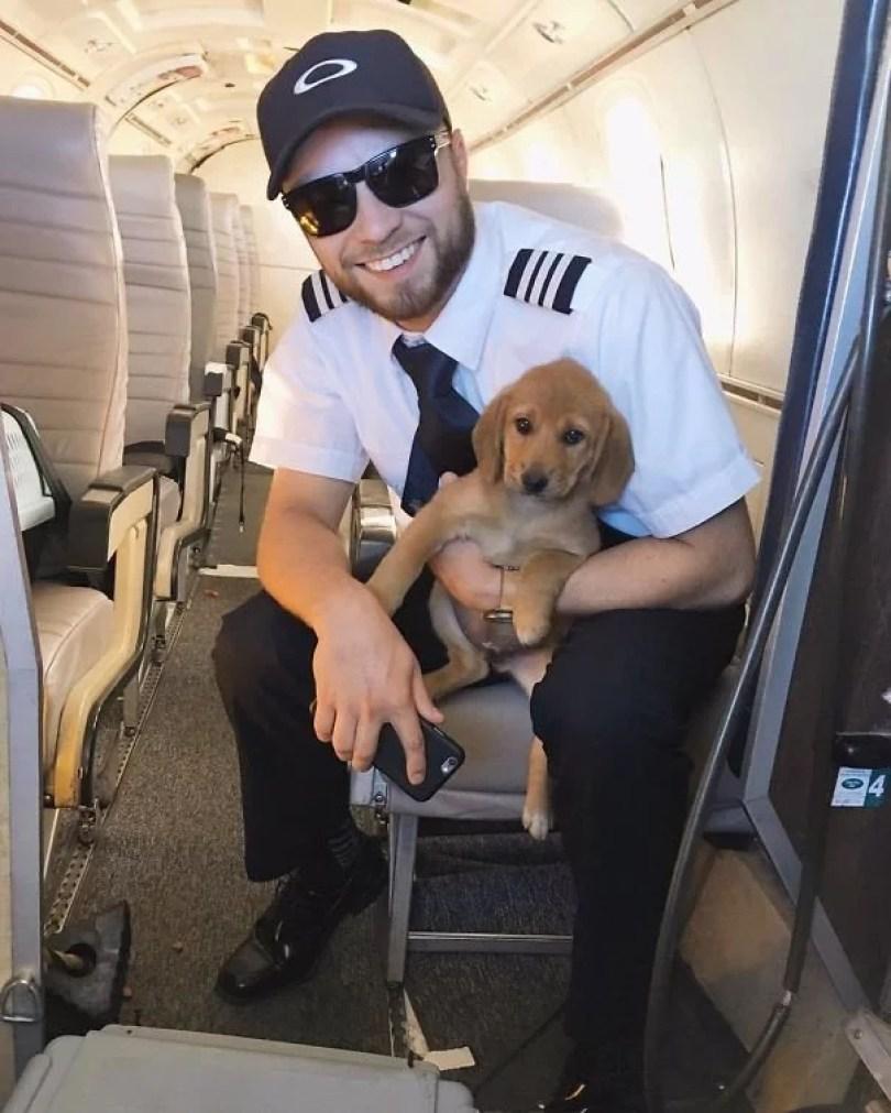 animais em voo permitido avião 21 - Afinal, é permitido animais em voos dentro do avião?