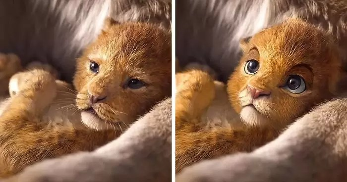 lion king live action fan remake nikolay mochkin fb29 png  700 - Olhar Alternativo ao Rei Leão live-action Remake 2019