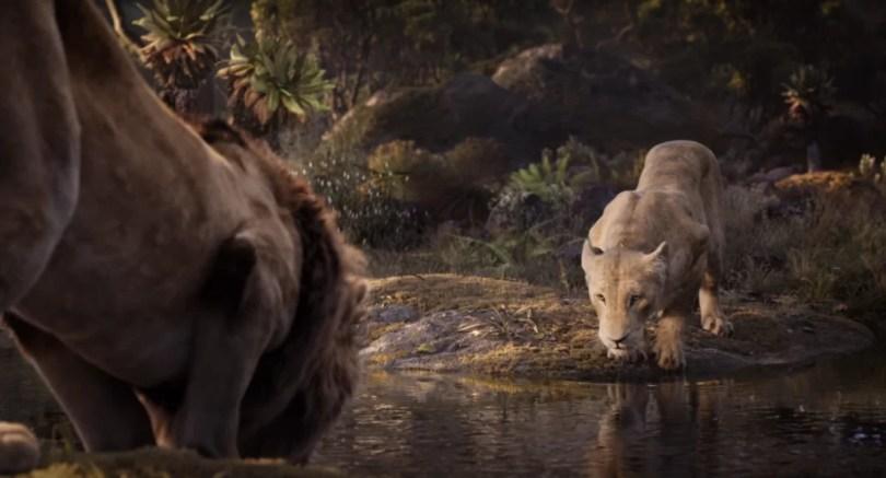 """sima nala amor chegou - Trecho de """"Esta Noite O Amor Chegou"""" é revelado em trailer do Rei Leão"""