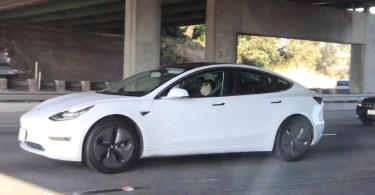 Tesla driver asleep - Já é comum ver motoristas Tesla dormindo ao volante no piloto automático