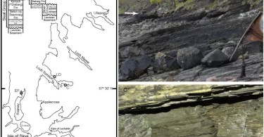 cientistas encontram ponte para a vida em fossil de 1 bilhao de anos foto