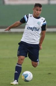 João Pedro, recuperado de incômodo na coxa, participou das atividades. (Cesar Greco/Ag.Palmeiras/Divulgação)