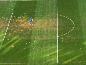 O lamentável estado do gramado no Allianz Parque (Reprodução/@dibella/Instagram)