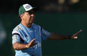 Marcelo Oliveira promoveu último treinamento antes de embarque para Belo Horizonte. (Cesar Greco/Ag.Palmeiras/Divulgação)