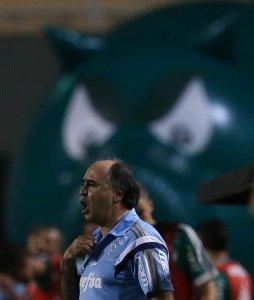 Marcelo Oliveira aprovou atuação da equipe contra o Grêmio. (Cesar Greco/Ag.Palmeiras/Divulgação)