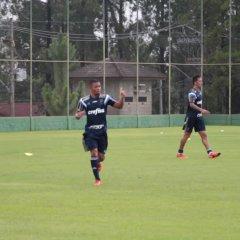 Os belos gols de G.Jesus e Barrios no primeiro coletivo de 2016