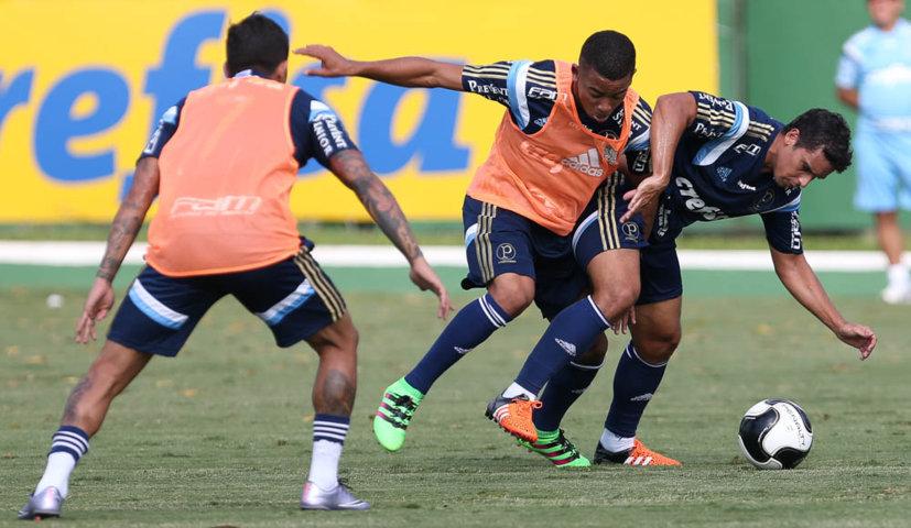 Marcelo Oliveira comandou um coletivo nesta sexta-feira (29). (Cesar Greco/Ag.Palmeiras/Divulgação)