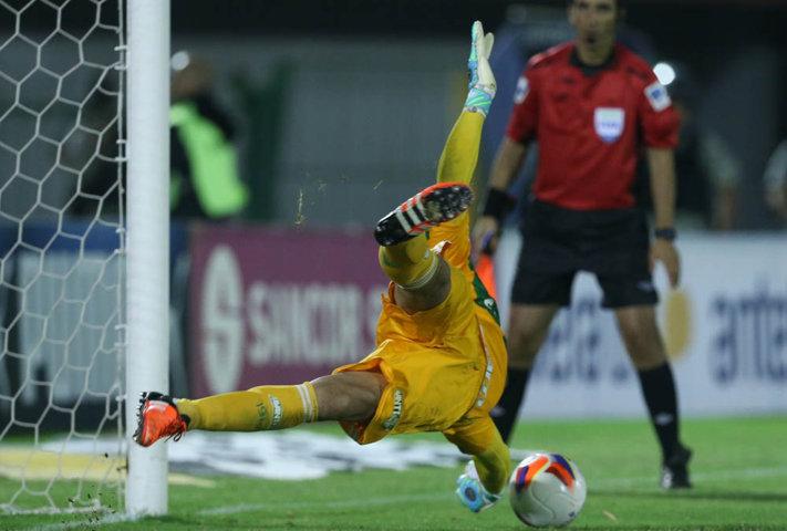 Fernando Prass defendeu dois pênaltis e ainda converteu o seu. (Cesar Greco/Ag. Palmeiras/Divulgação)