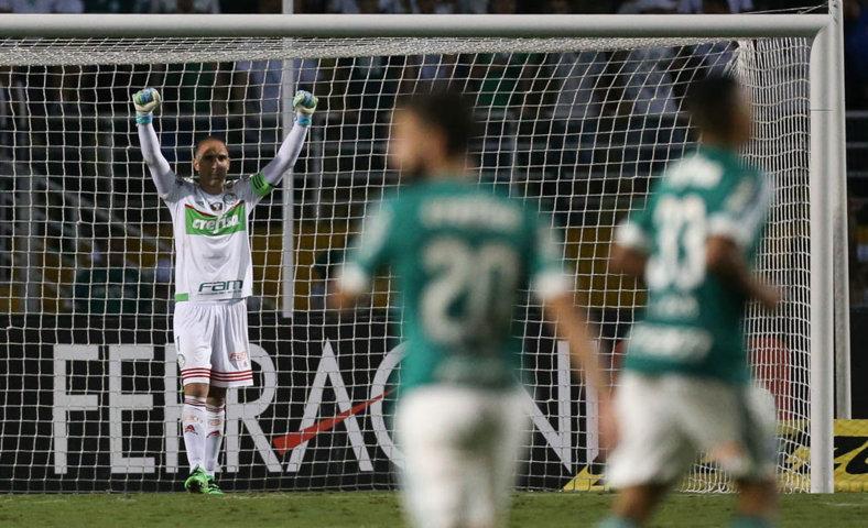 Fernando Prass comemorou muito os gols anotados pelo Verdão. (Cesar Greco/Ag.Palmeiras/Divulgação)