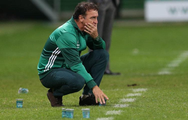 Cuca segue invicto no Allianz Parque à frente do Verdão: sete vitórias em sete jogos. (Cesar Greco/Ag.Palmeiras/Divulgação)