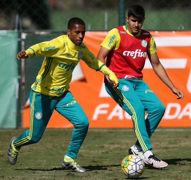 O Palmeiras voltou a treinar na tarde desta quinta (09). (Cesar Greco/Ag.Palmeiras/Divulgação)