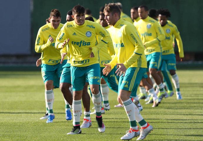 Após suspensão, Thiago Martins retorna aos relacionados contra o América-MG. (Cesar Greco/Ag Palmeiras/Divulgação)